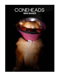 Coneheas